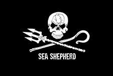 Sea Shepherd Deutschland