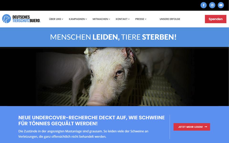 11/2019 Relaunch Deutsches Tierschutzbüro e.V.